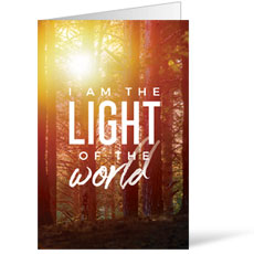 Light of the World Forest