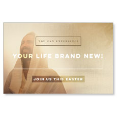 Easter Life Brand New